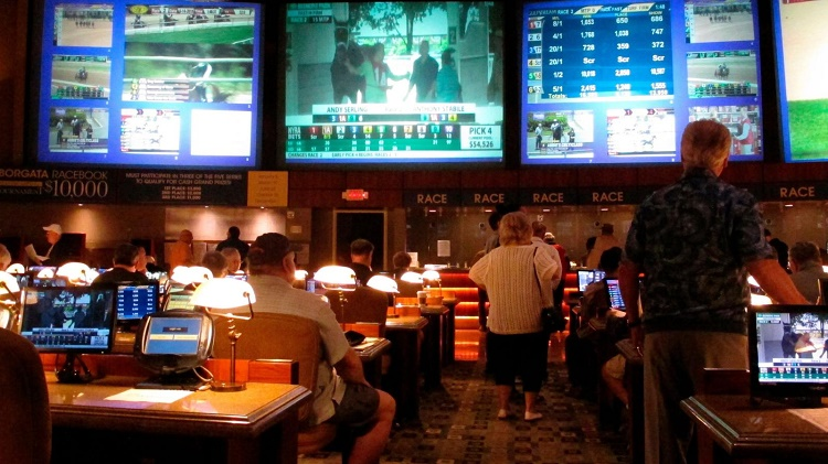 Sports Betting Businesses: Things to Expect in 2020